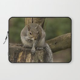 Woodland wildlife grey squirrel Laptop Sleeve