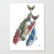 INKYFISH - Fish friends Canvas Print