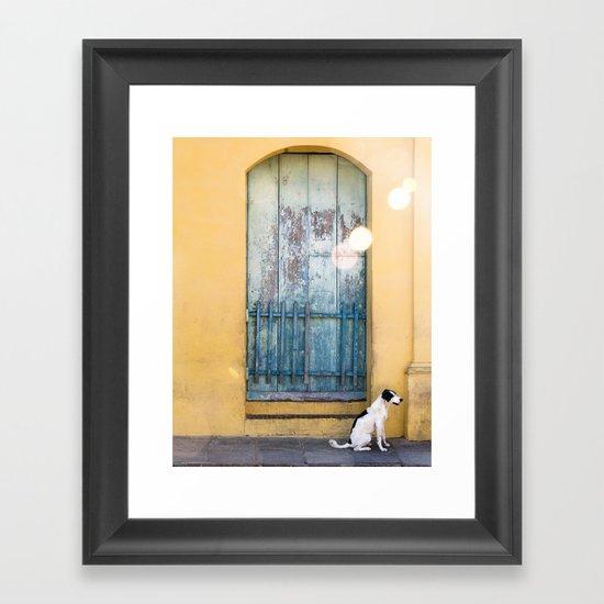 Waiting White Dog Framed Art Print