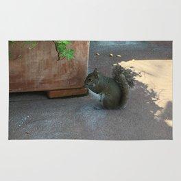 Crouching Squirrel Rug