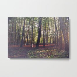 BEFORE THE DAWN HEALS US Metal Print