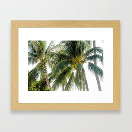 Island Life on Koh Tao Framed Art Print