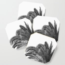 Summer Palm Leaf Print {3 of 3} | B&W Black and White Sun Sky Beach Vibes Tropical Plant Nature Art Coaster