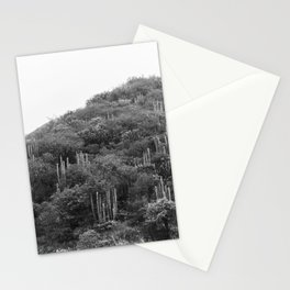 Metztitlán valley Stationery Cards