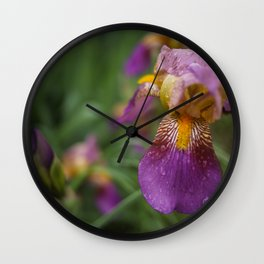 Purple and Yellow Bearded Iris Flowers Blooming in a Spring Garden 4 Wall Clock