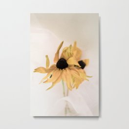 Yellow rudbeckia Metal Print