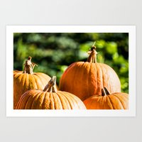 vegetable Art Prints featuring  autumn vegetable by Karl-Heinz Lüpke