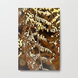 Abstract autumn fern leave Metal Print