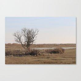 Wild Landscapes at the coast 1 Canvas Print