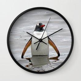 Gentoo Penguin in the Sea Wall Clock