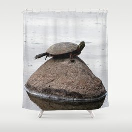 Baby Turtle on a Rock Shower Curtain