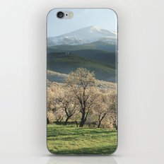 Flowering almond at the Mountains. Retro iPhone & iPod Skin