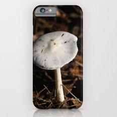 mushroom in the sun iPhone 6s Slim Case