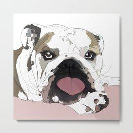 English Bulldog heart shaped tongue Metal Print