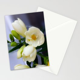 Shades of yellow on white freesia Stationery Cards
