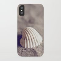 seashell iPhone & iPod Cases featuring Seashell by Dena Brender Photography