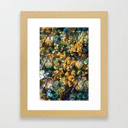 Peacock Rainbow Glitter Framed Art Print