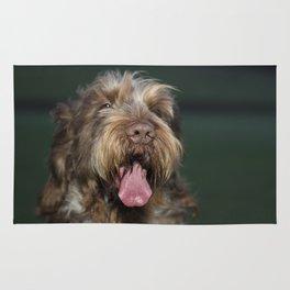 Brown Roan Italian Spinone Dog Head Shot Rug