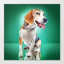 Super Pets Series 1 - Super Buckley Canvas Print