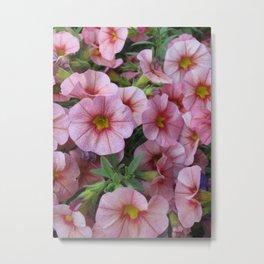 Buncha Pink Metal Print