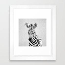 Baby Zebra - Black & White Framed Art Print