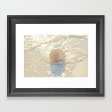 Whelk in the Sea Framed Art Print