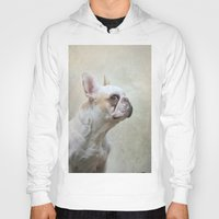 french bulldog Hoodies featuring French bulldog  by Pauline Fowler ( Polly470 )