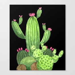 Flowering Cactus Bunch on Black Canvas Print