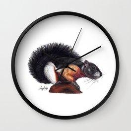 Tri-Color Prevost's Squirrel Wall Clock
