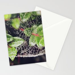 The Spider's Web Stationery Cards