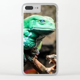 Waxy Monkey Frog, Museum of the Rockies, Bozeman MT Clear iPhone Case