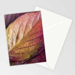 Autumn Colours II Stationery Cards