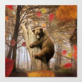 Brown bear climbing on tree Canvas Print
