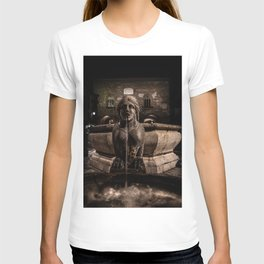 Night image of the fountain detail of Piazza Vecchia. T-shirt