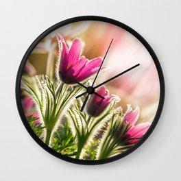Pasque Wall Clock