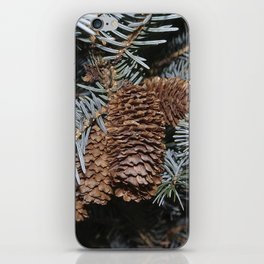 Spruce Cones And Branches iPhone Skin
