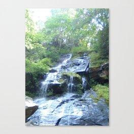 Hen Wallow Falls 2 Canvas Print