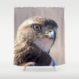 Watercolor Bird Red-tailed Juvenile Hawk 06, Flashing the Look! Shower Curtain