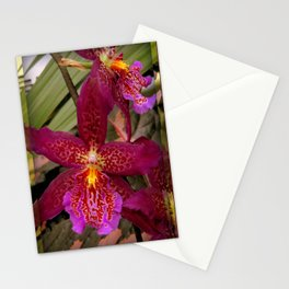 Rose Madder Orchids Stationery Cards