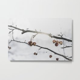 First Snow Day of December Metal Print