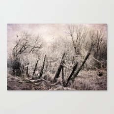 Pink Frost Canvas Print