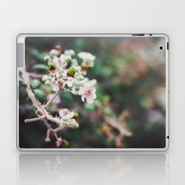 Rubus Laptop & iPad Skin