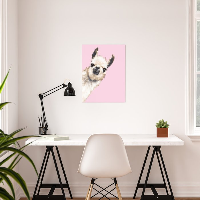 Sneaky Llama in Pink Poster