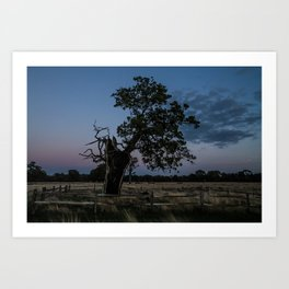 The Moody Tree. Art Print