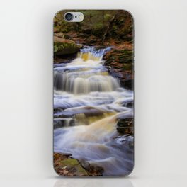 Autumn Cascade iPhone Skin