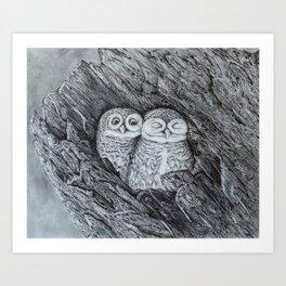 Burrowing Owls Art Print