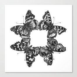 Butterfly Symmetry Canvas Print