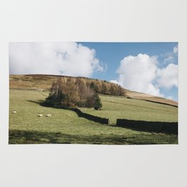 Grazing sheep and trees on a hillside. Edale, Derbyshire, UK. Rug