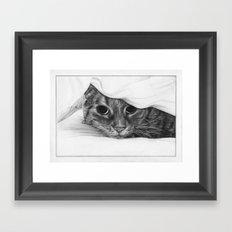 Tabitha the Tabby Cat Framed Art Print