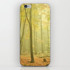 forest impression iPhone & iPod Skin